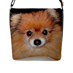Pomeranian Flap Messenger Bag (L)