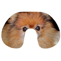 Pomeranian Travel Neck Pillows
