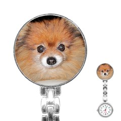 Pomeranian Stainless Steel Nurses Watch