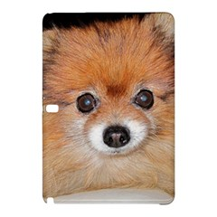 Pomeranian Samsung Galaxy Tab Pro 12.2 Hardshell Case