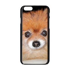 Pomeranian Apple iPhone 6/6S Black Enamel Case
