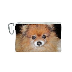 Pomeranian Canvas Cosmetic Bag (S)