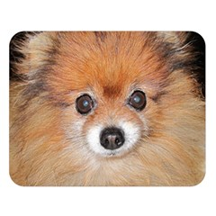 Pomeranian Double Sided Flano Blanket (Large)