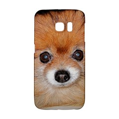 Pomeranian Galaxy S6 Edge