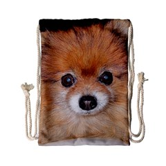 Pomeranian Drawstring Bag (Small)