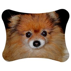 Pomeranian Jigsaw Puzzle Photo Stand (Bow)