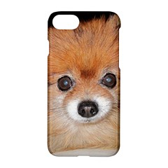 Pomeranian Apple iPhone 7 Hardshell Case