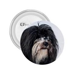 Tibet Terrier  2.25  Buttons
