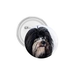 Tibet Terrier  1.75  Buttons