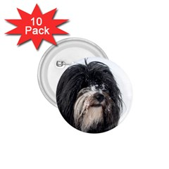 Tibet Terrier  1.75  Buttons (10 pack)