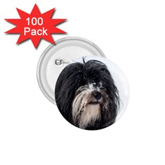 Tibet Terrier  1.75  Buttons (100 pack)
