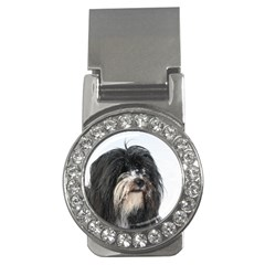 Tibet Terrier  Money Clips (CZ)
