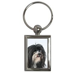 Tibet Terrier  Key Chains (Rectangle)