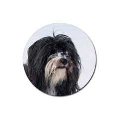 Tibet Terrier  Rubber Round Coaster (4 pack)