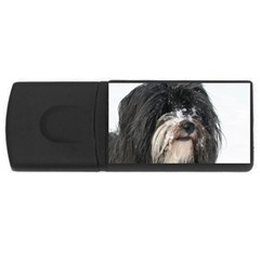 Tibet Terrier  USB Flash Drive Rectangular (2 GB)