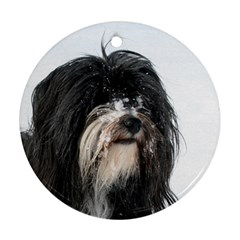Tibet Terrier  Round Ornament (Two Sides)