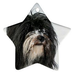 Tibet Terrier  Star Ornament (Two Sides)