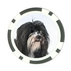 Tibet Terrier  Poker Chip Card Guards