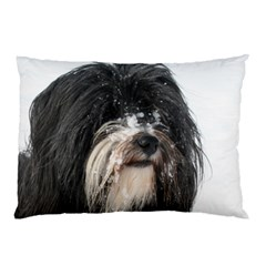 Tibet Terrier  Pillow Case