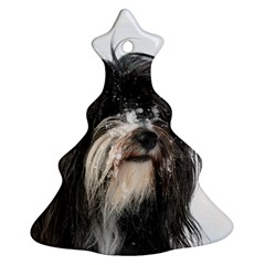 Tibet Terrier  Christmas Tree Ornament (2 Sides)