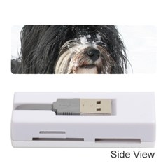 Tibet Terrier  Memory Card Reader (Stick)