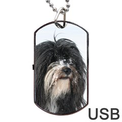 Tibet Terrier  Dog Tag USB Flash (Two Sides)