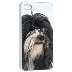 Tibet Terrier  Apple iPhone 4/4s Seamless Case (White)