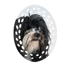 Tibet Terrier  Oval Filigree Ornament (2-Side)