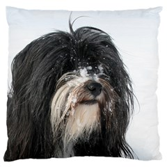 Tibet Terrier  Large Cushion Case (Two Sides)