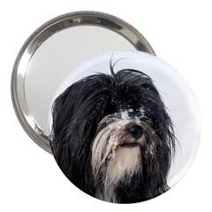 Tibet Terrier  3  Handbag Mirrors