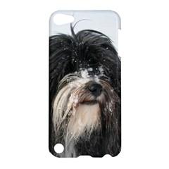 Tibet Terrier  Apple iPod Touch 5 Hardshell Case