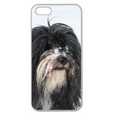 Tibet Terrier  Apple Seamless iPhone 5 Case (Clear)
