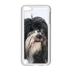 Tibet Terrier  Apple iPod Touch 5 Case (White)