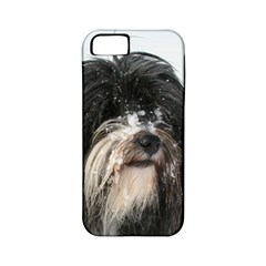 Tibet Terrier  Apple iPhone 5 Classic Hardshell Case (PC+Silicone)