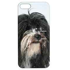 Tibet Terrier  Apple iPhone 5 Hardshell Case with Stand