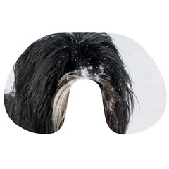 Tibet Terrier  Travel Neck Pillows
