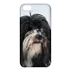 Tibet Terrier  Apple iPhone 5C Hardshell Case