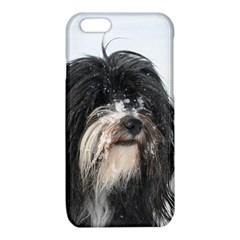 Tibet Terrier  iPhone 6/6S TPU Case