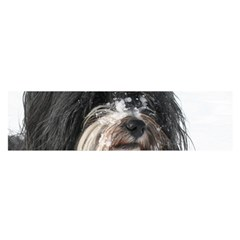 Tibet Terrier  Satin Scarf (Oblong)