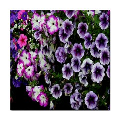 Flowers Blossom Bloom Plant Nature Tile Coasters