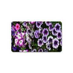 Flowers Blossom Bloom Plant Nature Magnet (Name Card)