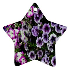 Flowers Blossom Bloom Plant Nature Star Ornament (Two Sides)