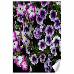 Flowers Blossom Bloom Plant Nature Canvas 24  x 36
