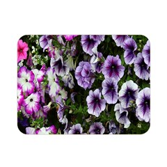 Flowers Blossom Bloom Plant Nature Double Sided Flano Blanket (Mini)