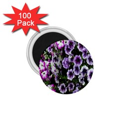 Flowers Blossom Bloom Plant Nature 1.75  Magnets (100 pack)