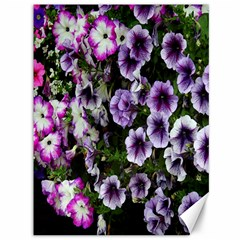 Flowers Blossom Bloom Plant Nature Canvas 36  x 48