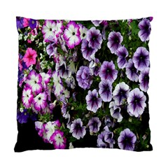Flowers Blossom Bloom Plant Nature Standard Cushion Case (One Side)