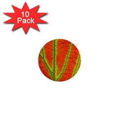 Unique Leaf 1  Mini Buttons (10 pack)