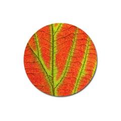 Unique Leaf Magnet 3  (Round)