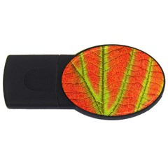 Unique Leaf USB Flash Drive Oval (1 GB)